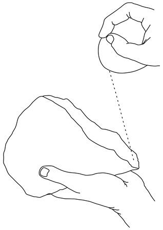 Akerman AA64 Figure 2