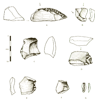 Artefacts from Bettys Creek (published in Australian Archaeology 51:30).