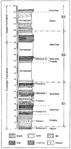 Geological column section (published in Australian Archaeology 57:2).