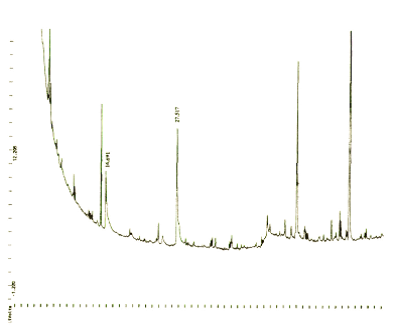 Gas chromatography sequence for Sample 1 (published in Australian Archaeology 49:25).