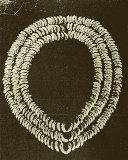 Kangaroo teeth arranged to form a necklace, from the Cooma burial site (published in Australaian Archaeology 43:41).