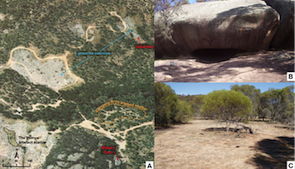 The Mulka's Cave complex (published in Australian Archaeology 78).